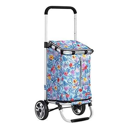 BIAOYU Carrito de la compra plegable con 2 ruedas, carrito de la compra telescópico, herramientas de equipaje, oficina, reutilizable, color azul claro