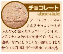 チョコミントアイスケーキ5号(ドーナッツ型)(HappyBirthday)