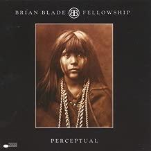 Best brian blade albums Reviews