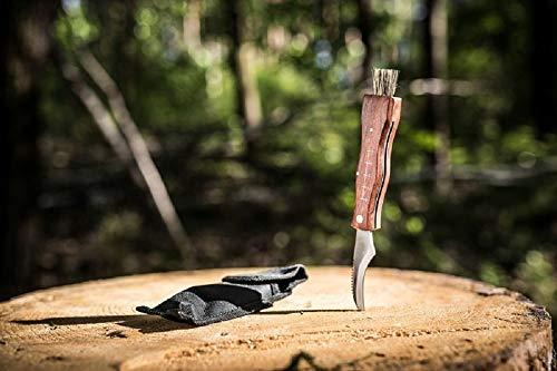 Messer zum Pilze sammeln, Pilzmesser braun mit weicher Bürste und Lineal, Holzgriff rostfreie Klinge Edelstahl, Champignon Trüffel Taschenmesser - Klappmesser - Freizeitmesser - Messer mit Etui