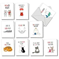 The Best Card Company - 20 Note Cards Blank Assortment (4 x 5.12 Inch) (10 Designs, 2 Each) - Cat Got Your Tongue AM7183OCB-B2x10 [並行輸入品]