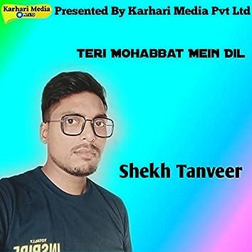 Teri Mohabbat Mein Dil