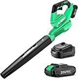 Cordless Leaf Blower - 20V Leaf Blower Battery Powered for Lawn Care, Leaves and Snow Blowing, Variable-Speed, 200 CFM 170 MPH Electric Blower with Battery & Charger for Yard, Work Around The House