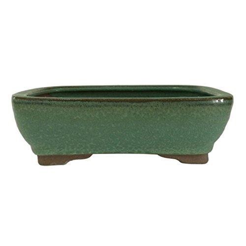 Brussel's 8' Rectangle Bonsai Glazed Ceramic Pot (Medium, Green)