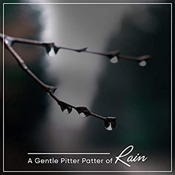 14 Ambient Rain Tracks for Sleep Aid and Relaxation