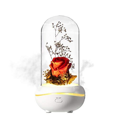 MMTX Regalo del Dia de Las Madres Rosa encantada Colorido LED Aromaterapia Luz, Romántico Aceites Esenciales Difusor Regalos Decoración para el hogar para Navidad San Valentín Aniversario Regalo