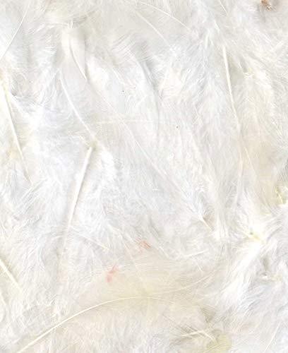 Artemio - Piumette, 3 g, Colore: Bianco