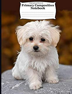 Primary Composition Notebook: Adorable Cute Maltese Puppy. Draw and Write Journal with Picture Space for Drawing and Primary Ruled Lines for Creative Writing 54 sheets/108 pages 7.44