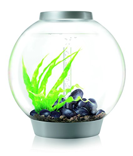 OASE biOrb CLASSIC 60 LED, bol aquarium, 60 l inhoud, zilver