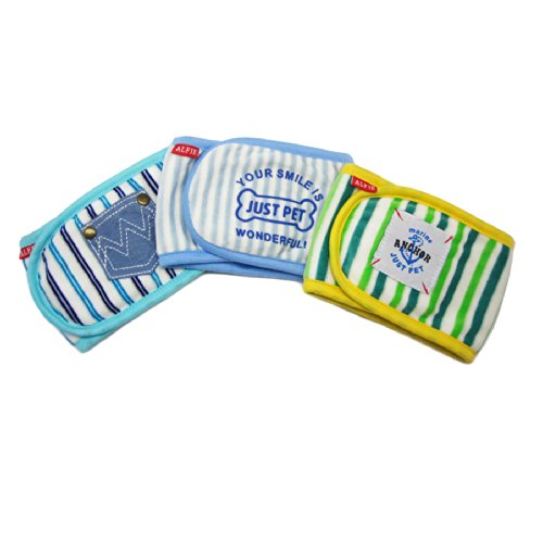 Alfie Pet - Gaki Belly Band 3-Piece Set for Male Pugs