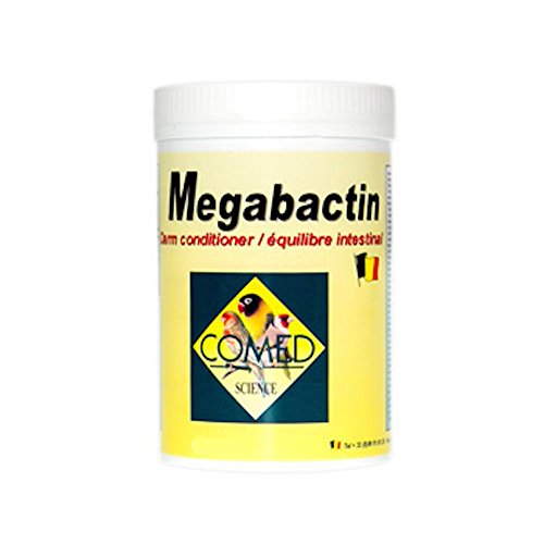 Iß megabactin 50gr (für eine perfekte Schutz Darm)