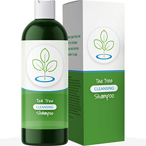 Tea Tree Oil Shampoo for Dandruff Sulfate Free Antibacterial Hair Cleanser Natural Hair Care For...