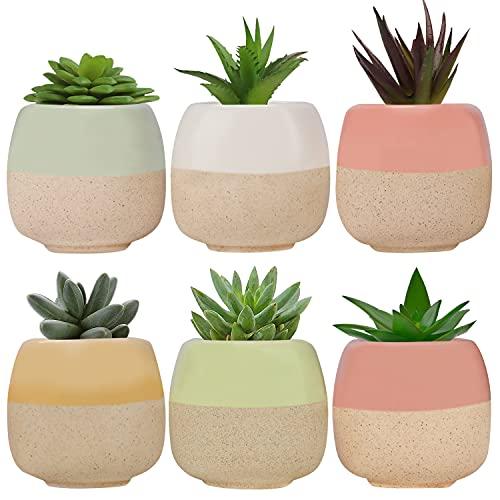 Mini Macetas Ceramica (Pack de 6) - 5.5 x 5.5 cm de Alto - Set Macetas Suculentas con Desagüé - Maceteros Decorativos - Ideal para el Hogar, Oficina, Interiores, Exteriores, Decoración del Jardín