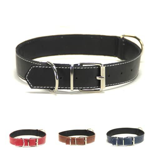 Collar para Perro de Piel, Perros pequeños, medianos y Grandes, Ancho y Resistente, Collares en Color marrón, Azul Marino, Negro y Rojo (M: Ajustable 27 - 37 CM, Ancho 2 CM, Negro)