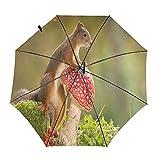 Ardillas setas viaje paraguas plegable portátil compacto ligero diseño automático y alta resistencia al viento