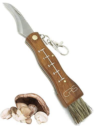 CRS Polizeigeprüftes Pilzmesser mit Bürste/Pinsel zum aufklappen mit Lineal aus rostfreiem Stahl. Kleines Taschenmesser für Outdoor u. Camping | Klappmesser mit gebogener Klinge