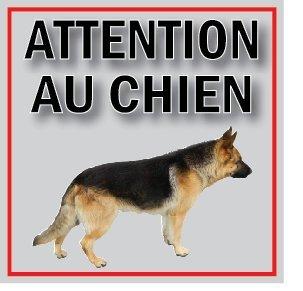 Panneau attention au chien 100X100mm