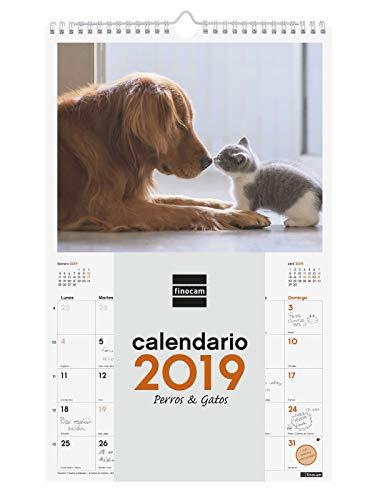 Finocam 780553019 - Calendario de pared 2019