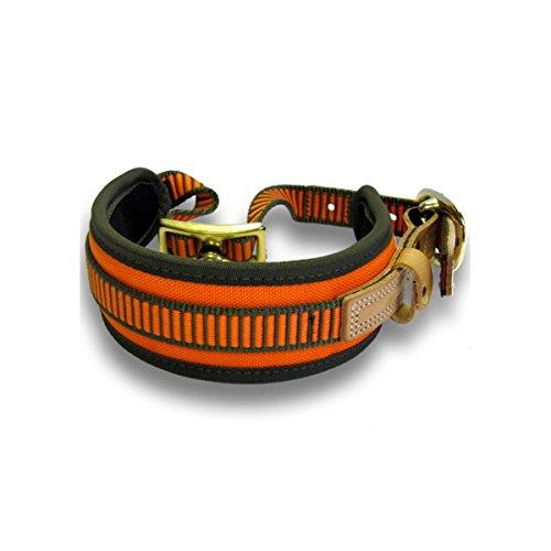 Niggeloh Hundehalsband Schweißhalsung, orange-oliv, S, 011100021