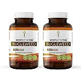 Bugleweed 120 Capsules(2 pcs.), 800 mg, Organic Bugleweed (Lycopus Virginicus) Dried Herb (2x120 Capsules)