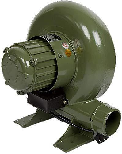 Soplador de aire/bomba eléctrica FANTE FORGE MANUAL HIRON STOWER, Secador de pelo para el hogar Hoja Sopladores de aire, 120W Jialele