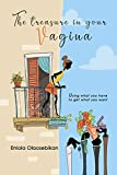 The Treasure In Your Vagina: Using What You Have To Get What You Want: (A Book For Single and Married Ladies; and Men Who Seek to Understand Their Women) (English Edition)