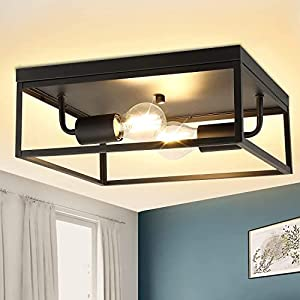 DLLT 2-Light Industrial Flush-Mount Ceiling Lighting Fixture, 12.9 Inch Cage Square Close to Ceiling Light for Kitchen Hallway Bedroom Foyer Living Room Dining Room, Matte Black Finish Ceiling Lamp