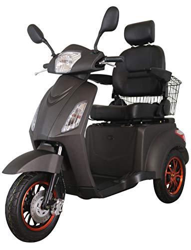 Green Power Scooter electrico de Movilidad Reducida Triciclo/Scooter Nuevo estabilidad 60V100Ah 800W...