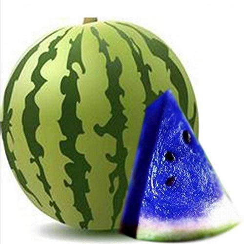 Feli546Bruce Wassermelonensamen, 100 Stück Mehrfarbige Wassermelonensamen Hausgarten Farm Sweet Juicy Fruit Plant Blau Wassermelonensamen