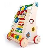 NBHUYT Walker multifunción Inicio de Primera Infancia los niños de Madera del bebé del Caminante del bebé del Cochecito Paso a Paso (Color : Wood, Size : 51 * 33 * 30CM)