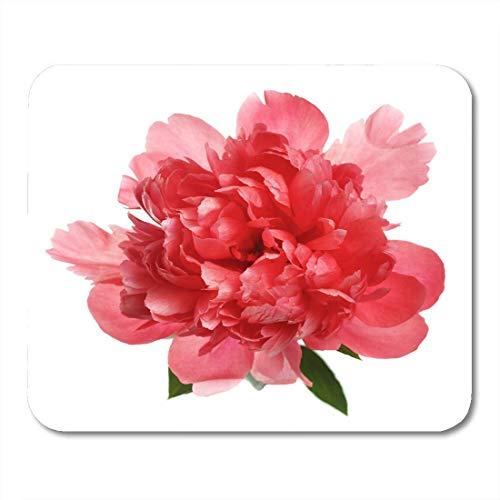 Mauspad rosa rose blume selten lachsfarbene pfingstrose single blossom mousepad für notebooks, Desktop-computer mausmatten, Büromaterial