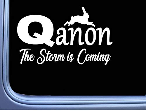 DKISEE Vinyl Sticker Qanon The Storm Is Coming Sticker Decal Q Anon Patriot White Rabbit Laptop Vinyl Decal Window Wall Sticker Car Decal 8 inch