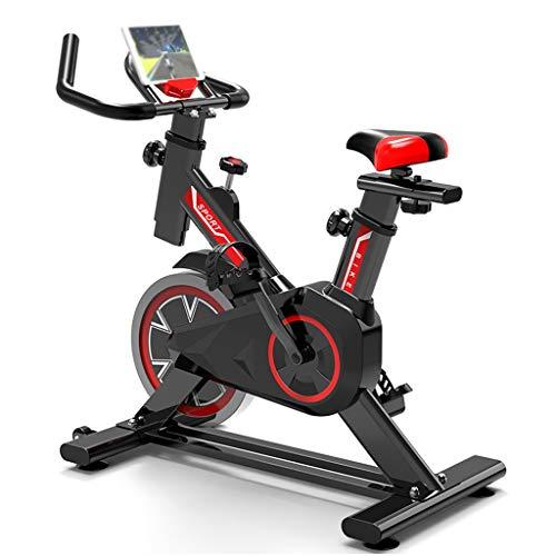 YLAN Bicicleta estática Indoor Cycling Bici de Spinning de