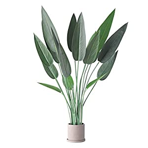 Silk Flower Arrangements 5.3 Ft Premium Artificial Travelers Palm Tree, 3.3 Ft Fiddle Leaf Fig Artificial Trees, Deluxe 3.7 Ft Bird of Paradise Artificial Plant (Bird of Paradise, 1)