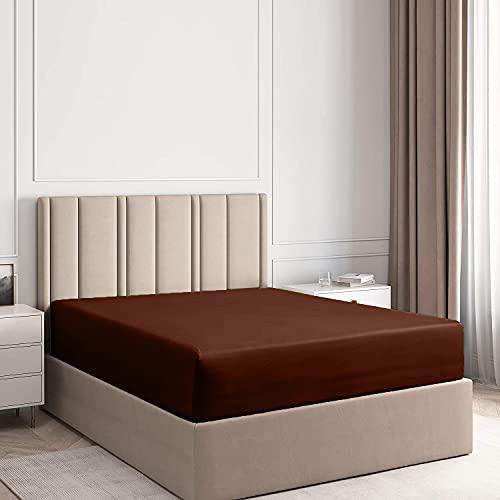 Dan River - Sábana bajera ajustable 100 % algodón para cama de matrimonio, sábana bajera ajustable para cama individual, sin arrugas, ajuste cómodo, sábana King de 40,6 cm de profundidad, tamaño king, color marrón