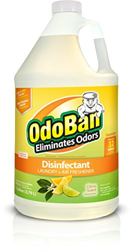 OdoBan Concentrate Disinfectant Laundry and Air Freshener Citrus Scent, 1 Gal.