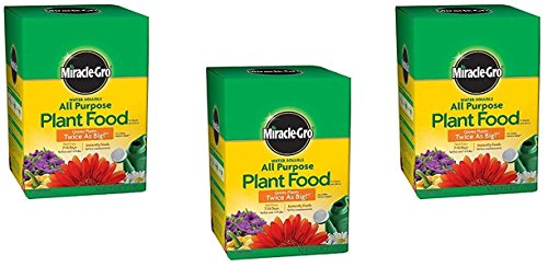 Miracle-GRO 160101 Water-Soluble All Purpose Plant Food, 24-8-16, 1-Pound (1 lb Pack of 3)