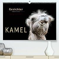 Kamel Gesichter (Premium, hochwertiger DIN A2 Wandkalender 2022, Kunstdruck in Hochglanz): Eindrucksvolle Bilder der Ueberlebenskuenstler. (Monatskalender, 14 Seiten )