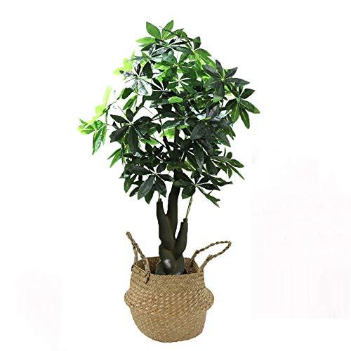 Yipianyun Palme Palmenbaum Königspalme, Cocospalme Kunstpflanze Kunstbaum Künstliche Pflanze Echtholz Hochzeit/Party Empfangstisch Blumen,Natural,200cm