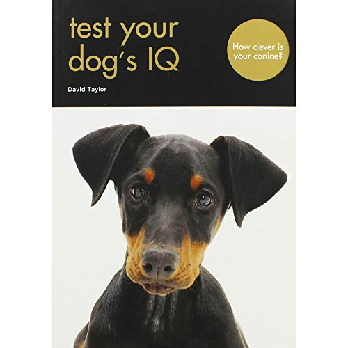 David Taylor Test Your Dogs IQ Hundespielzeug