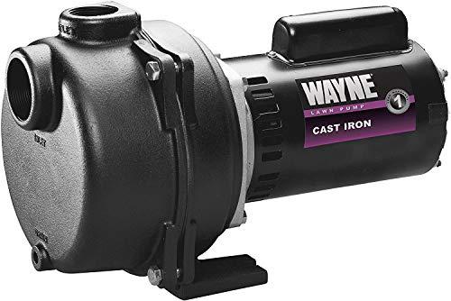 Wayne WLS200 2 HP Cast Iron High Volume Lawn Sprinkling Pump, 2-Horsepower
