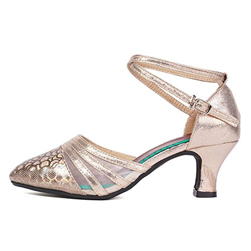 HROYL Dancing Shoes for Women Salsa1920 Shoes Women Low Heel Evening Shoes for Women Formal Low Heel,DY-New302-Champagne Color-5.5,US9