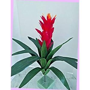 Artificial 21″ Artificial Bromeliad Plant Silk Floral Flowers Bouquet Realistic Flower Arrangements Craft Art Decor Plant for Party Home Wedding Decoration