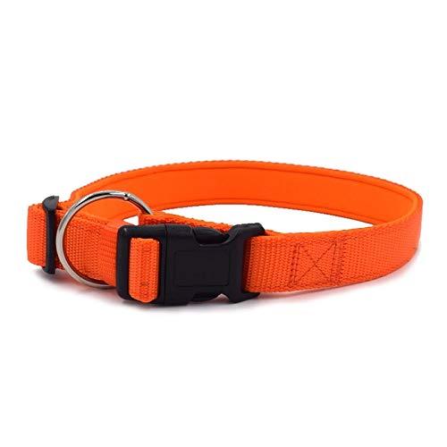 TIERLICH Hundehalsband aus Nylon | für Kleine, mittelgroße und große Hunde Gepolstert (S | 23-34cm, Orange)