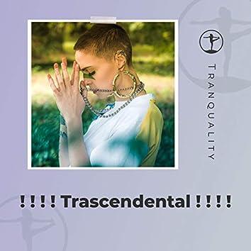 ! ! ! ! Trascendental ! ! ! !