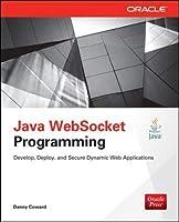 Java Websocket Programming (Oracle Press)
