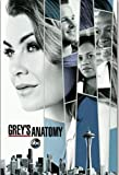 WZGJZ Leinwandbild Grey's Anatomy 2017 Neue Staffel 14