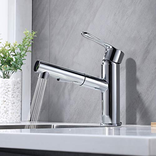 Lutriva Klein Wasserhahn Küche Ausziehbar Spültischarmatur Küchenarmatur Modern Edelstahl Chrom, Geeignet für Einzel- und Doppelwaschbecken