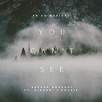 You Can't See (feat. Oishani)
