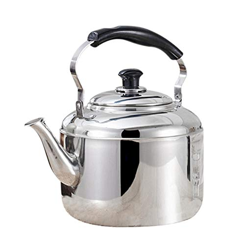 Hervidor de Acero Inoxidable con silbido, hervidor de té, café, Cocina, Estufa de inducción para el hogar, Cocina, Camping, Picnic, 4L-Verde Claro
